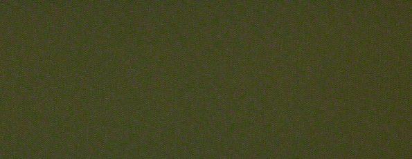 Rolgordijn 'Verduisterend plus' - 72.1535 - groen
