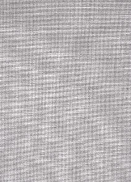 76.0060 - Verticale lamelgordijnen stof - PG 1 - lichtdoorlatend - lichtgrijs - 100% PES - verkrijgbaar in 89 mm