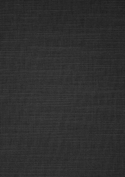 76.0064 - Verticale lamelgordijnen stof - PG 1 - lichtdoorlatend - zwart - 100% PES - verkrijgbaar in 89 mm